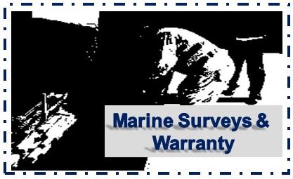 marinesurveyordubai.com